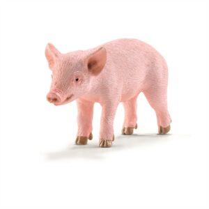 Piglet standing